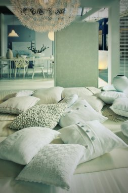 Pillows in living room