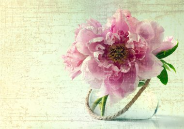 Vintage Spring flowers in vase on white background