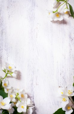 Art jasmine spring flowers frame on old wood background