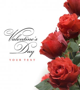 Art Valentine Day greeting card with red roses isolated on white