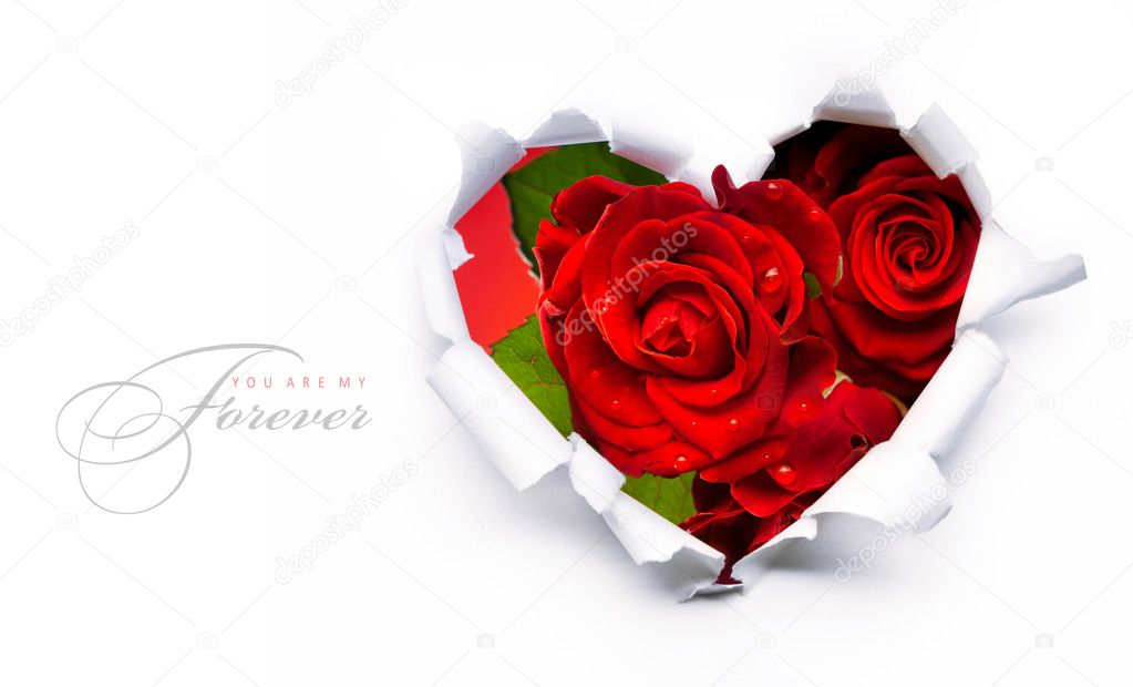 Art banner design of red roses and the paper heart on Valentine