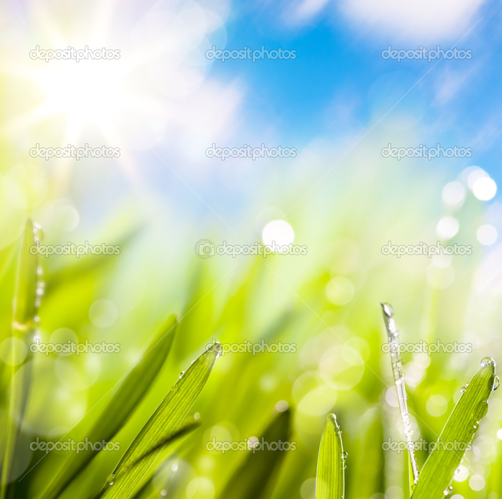 Abstracts of natural spring green background