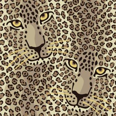 Wild Cat Couple