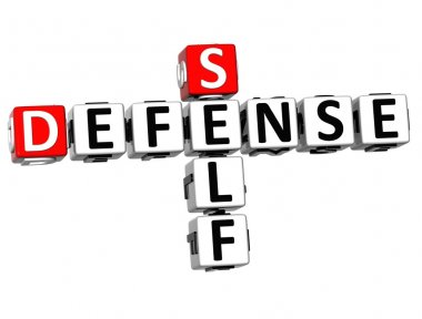 3D Self Defense Crossword cube words