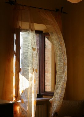 Window and curtains