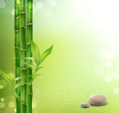 Vector meditative, oriental background with bamboo and stones