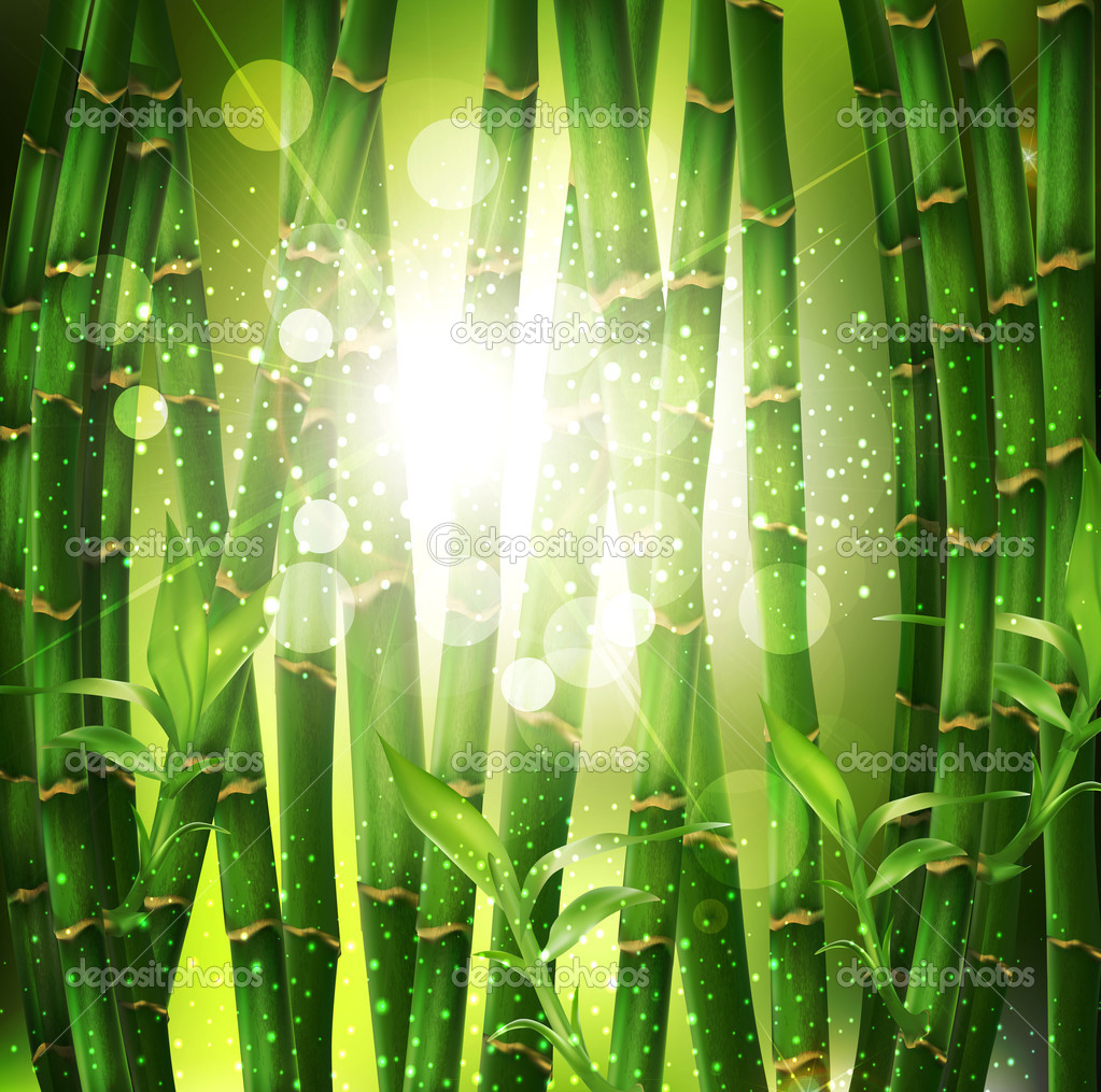 Vector background with oriental bamboo grove, and sunlight