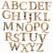 Fotografia alfabeto depoca basato sul vecchio giornale e note - in vettoriale