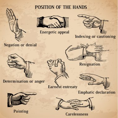 Set of vintage hands - Various Positions in vector -High Quality