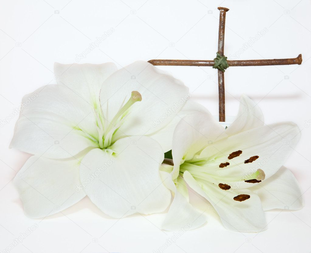 https://static8.depositphotos.com/1024576/868/i/950/depositphotos_8686886-stock-photo-crucifix-and-easter-white-lily.jpg