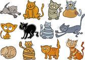 Cartoon Katzen set