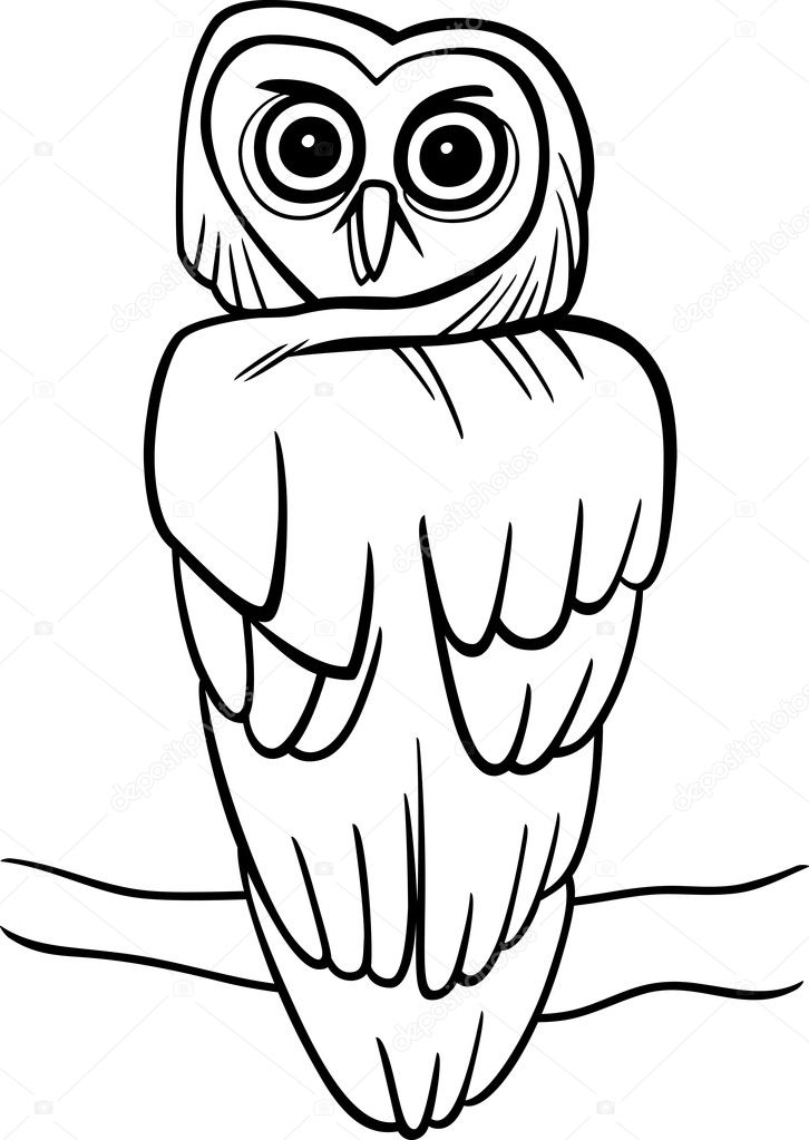 Cartoon Illustration Of Owl On The Tree For Coloring Book Vector By Izakowski
