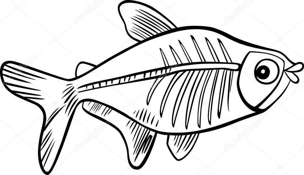Imágenes: esqueleto de los peces para colorear | dibujos animados ...