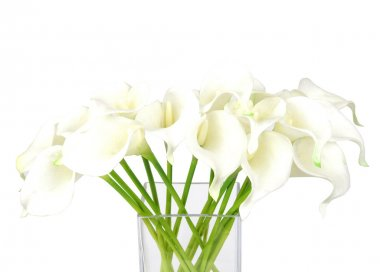 Bouquet of calla lilies in a glass vase