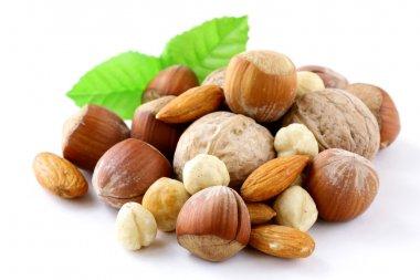 Mix nuts - walnuts, hazelnuts, almonds on a white background