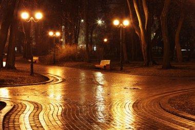 Crossroads in Mariinsky park