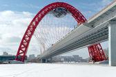 Moderní pozastavenou most v Moskvě