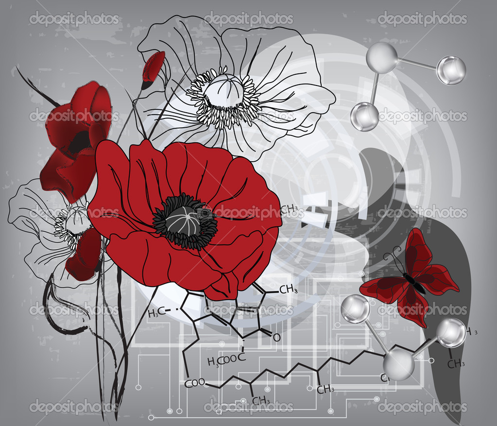 Modern poppies composition