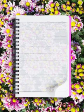 Book on pink flower