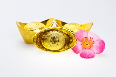 Gong Xi Fa Chai- Gold Ingots with flower