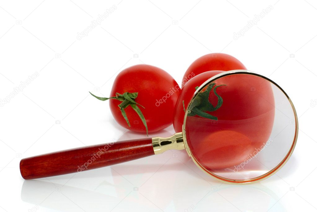 Red fresh tomatoes and magnifier, isolated on white
