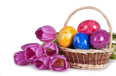 Easter eggs in a basket, with tulips