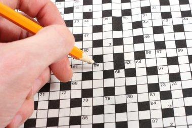 Hand doing crossword