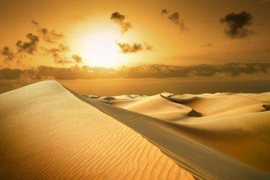 Gold desert. Sunset beach.