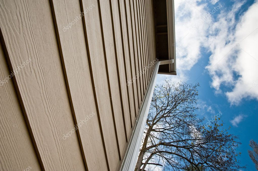 Downspout and siding