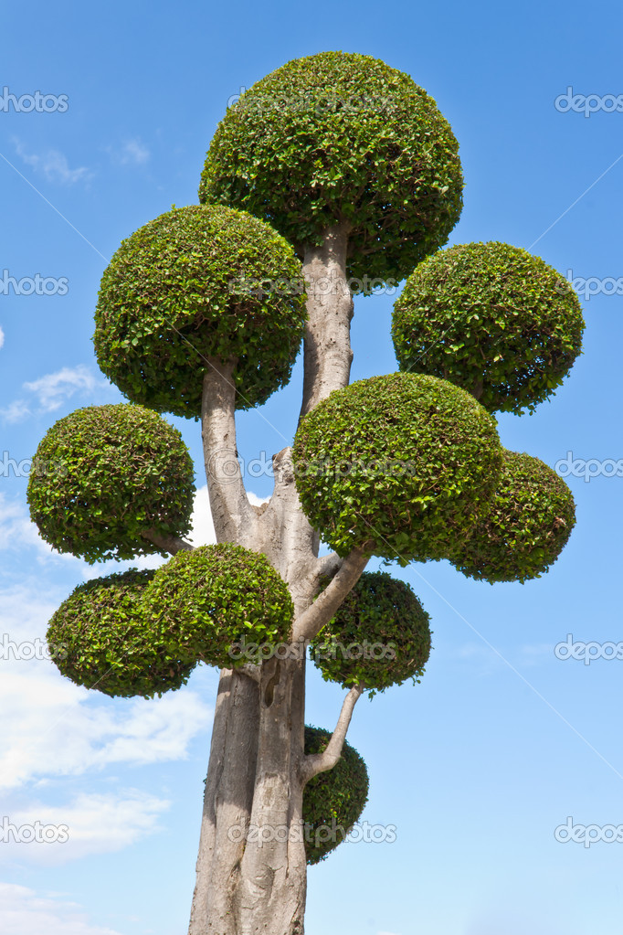 Fancy shaped decorative tree