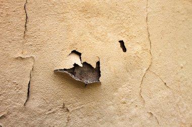 Home Repair Maintenance Water Damaged Peeling Paint