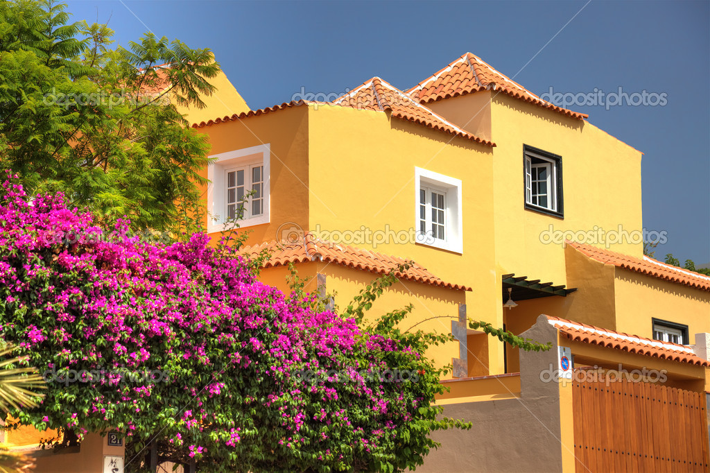 Classical spanish villa among flowers, not far from ocean. Tener