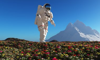 Astronaut goes on a field of flowers.