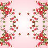 Fotografie roten Azaleen