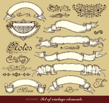 Vector set of calligraphic design elements and ribbons.