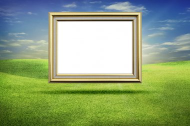 Gold frame grass sky