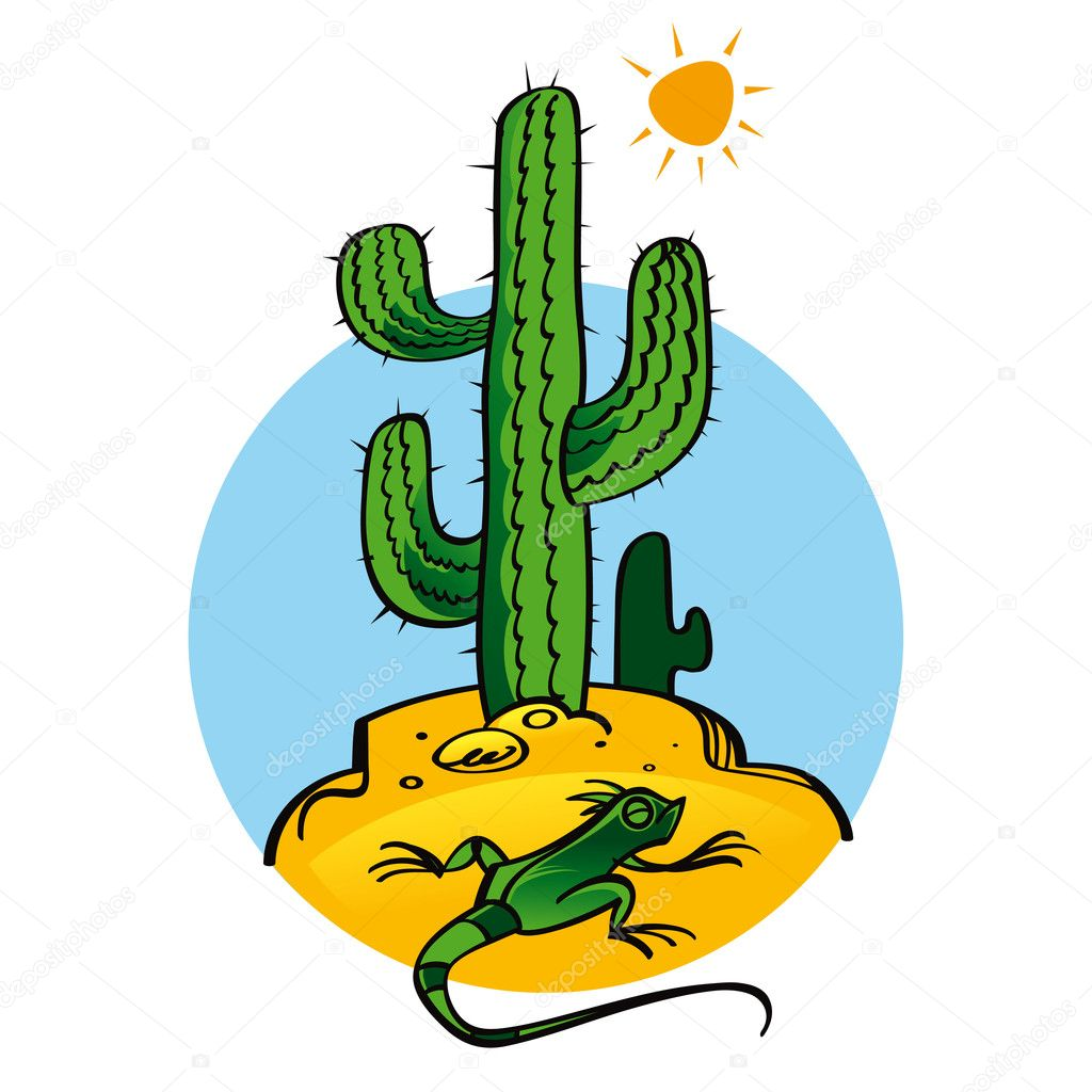 Cactus and Lizard nature plant reptile sun
