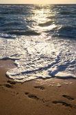 tengerpart és este napfényben elérési útja