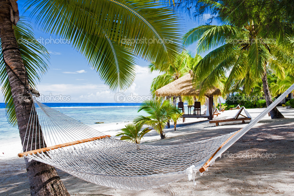 Empty hammock between palm trees on a beach