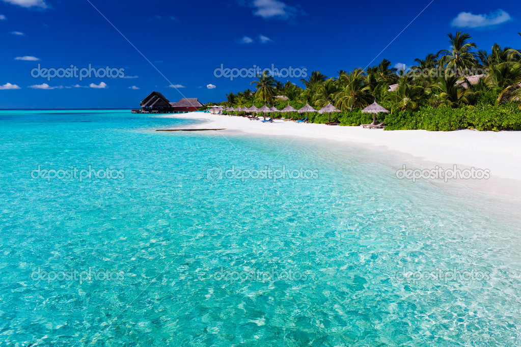 Palm trees over lagoon and white sandy beach