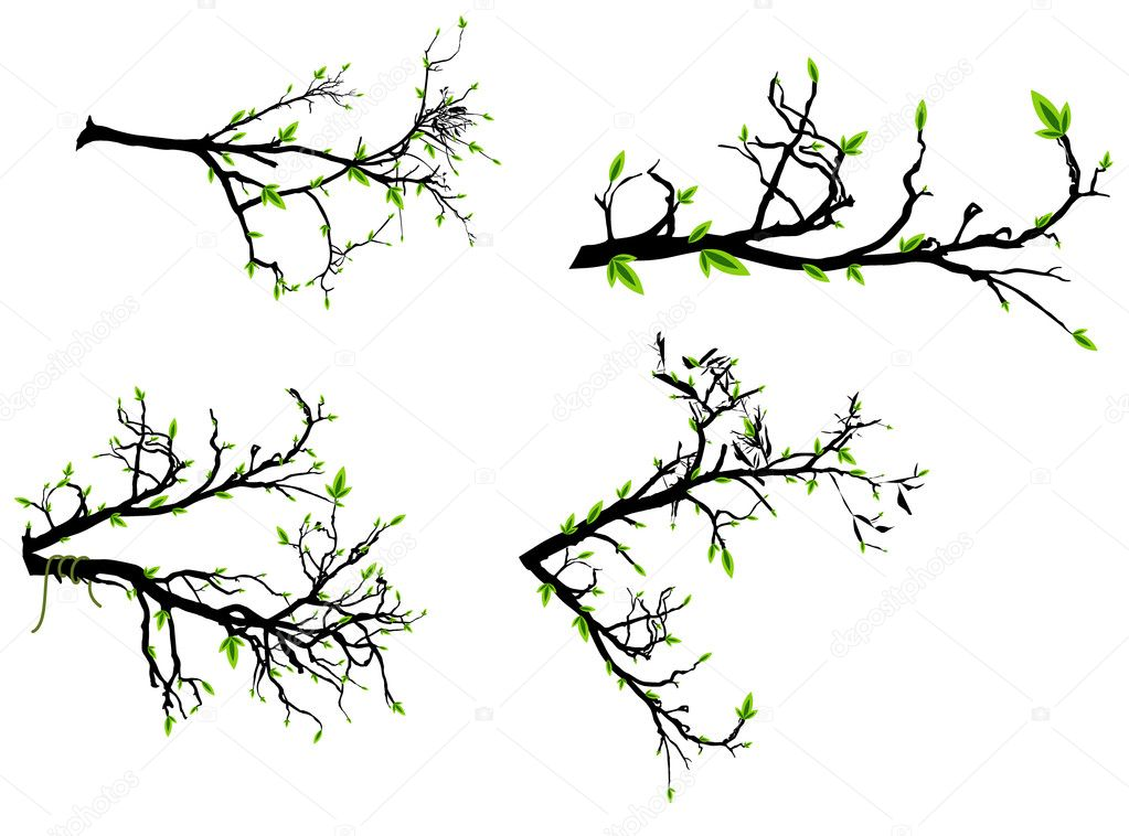 Set of Autumn Branches