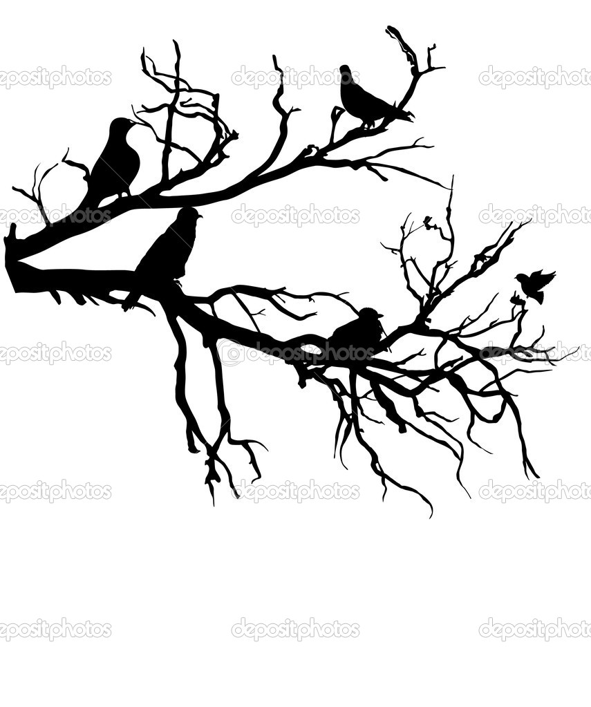 Shapes of Birds on a Tree Branch