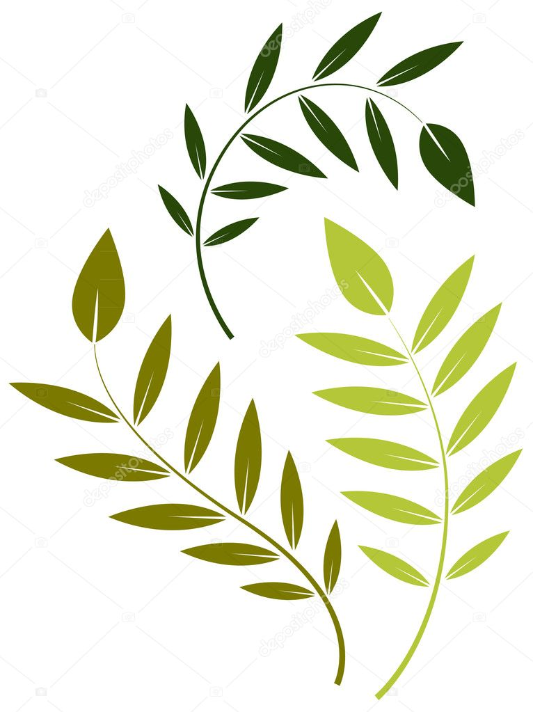 Green Leaf Vector Elements