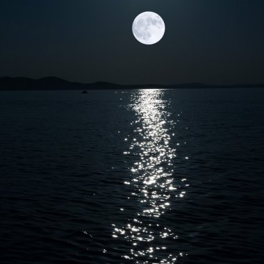 "Картина, постер, плакат, фотообои ""полная луна над морем "", артикул 9564495"