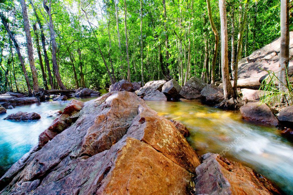 Peaceful Springs