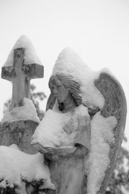Close up of a stone angel statue covered with snow