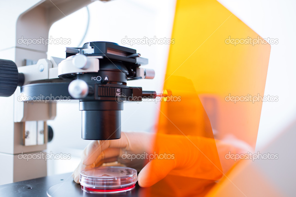 Research - using a modern microscope in a lab