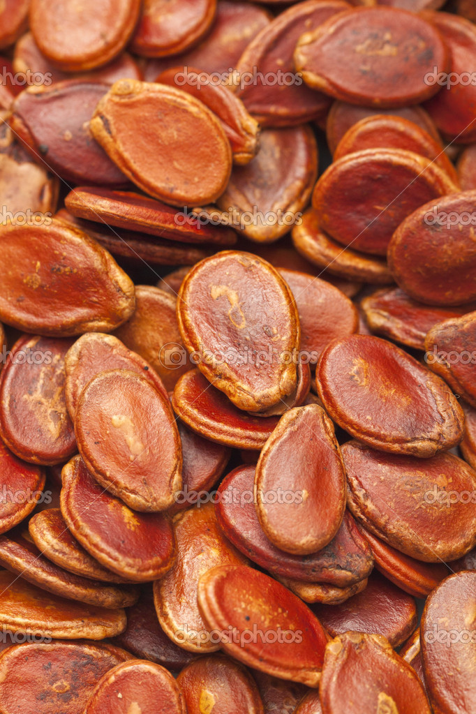 Red melon seeds in dry condition