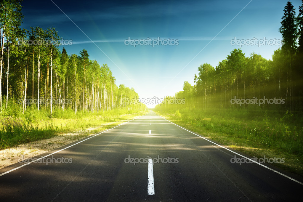 Фотообои Road in Russian forest