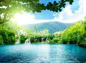 Fotografie jezero v hlubokých lesích